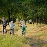 Vacances au Sri Lanka avec des enfants: 3 des meilleures activités à faire